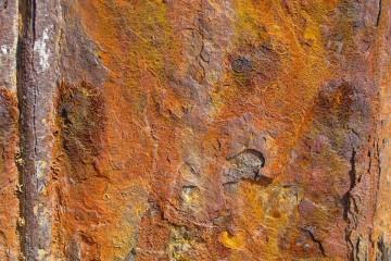 Australasian Corrosion Association (ACA)